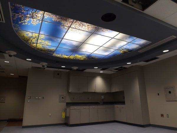 Ceiling Graphics & Displays